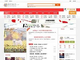 Discuz整站模板,艺佰地方门户gbk4.0整站带演示数据模版